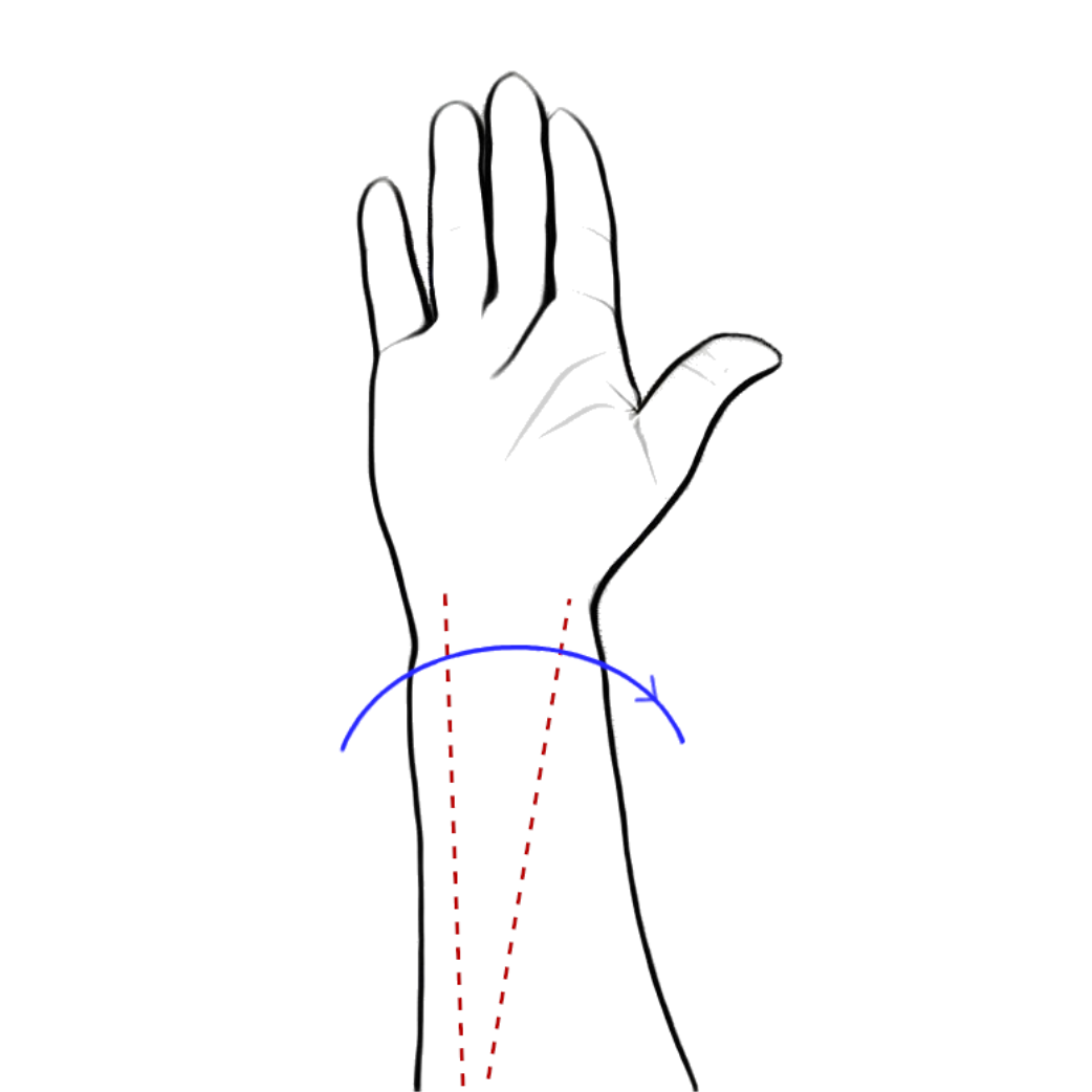 forearm supination