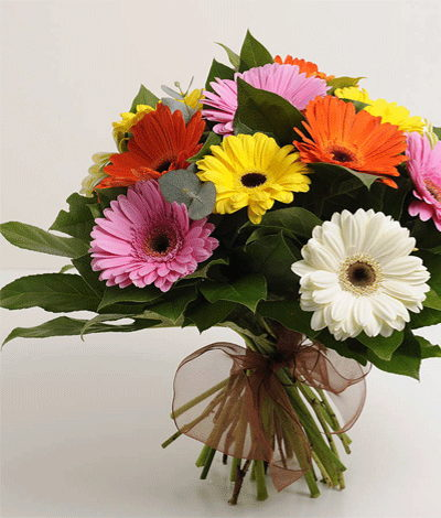 Bangalore Flowers Friendly Gerbera Bouquet