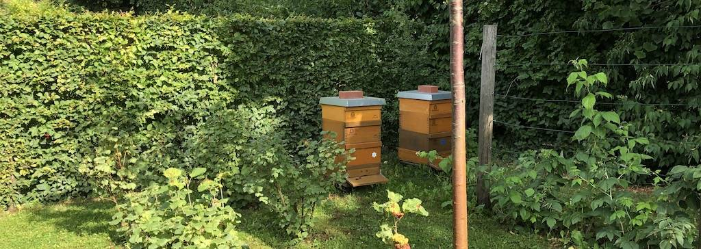 Bienenvölker im Obstgarten der Villa-Liebermann
