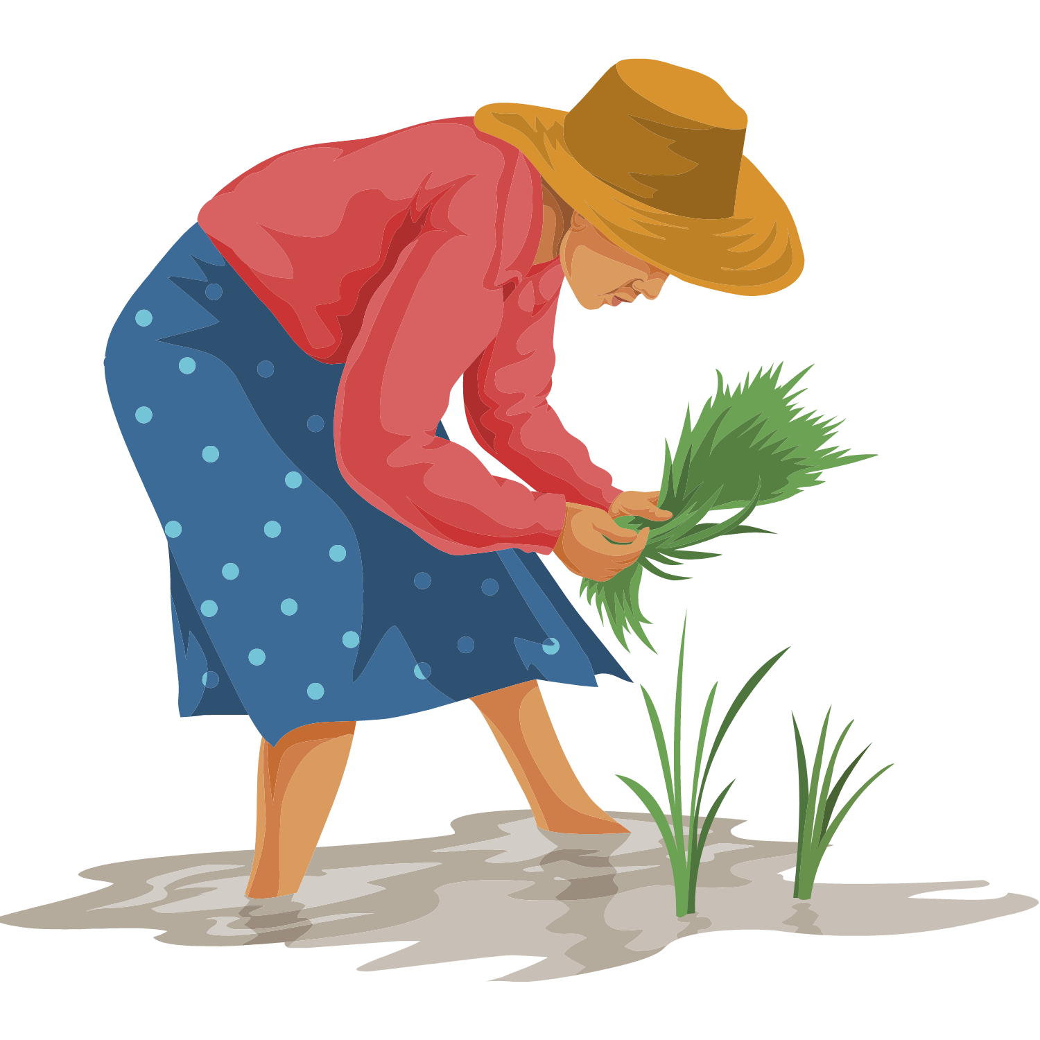 Illustration of a woman planting trees.
