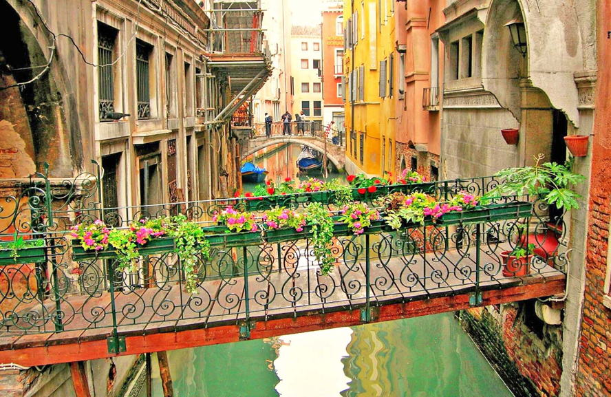 Venezia - venice-canal-transition-bridge-flowers.jpg