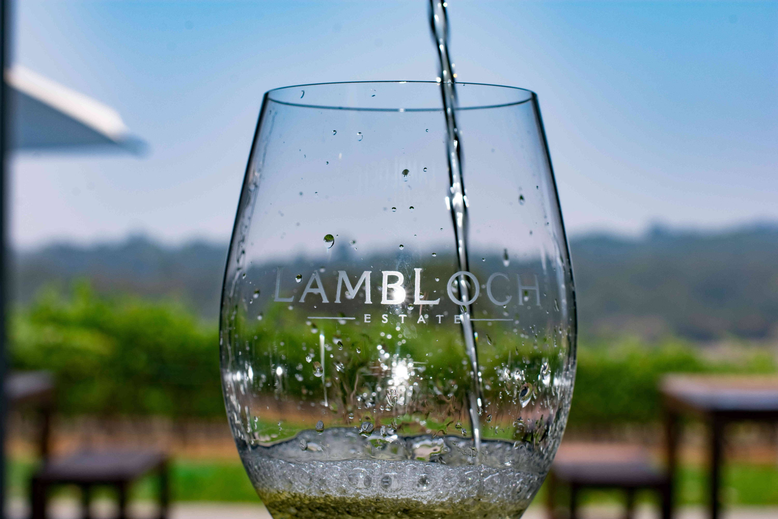 Pouring wine at Lambloch Estate Hunter Valley Vineyard