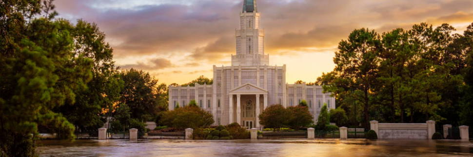 Banner image of the Houston Texas Temple. The grounds are flooded with water.