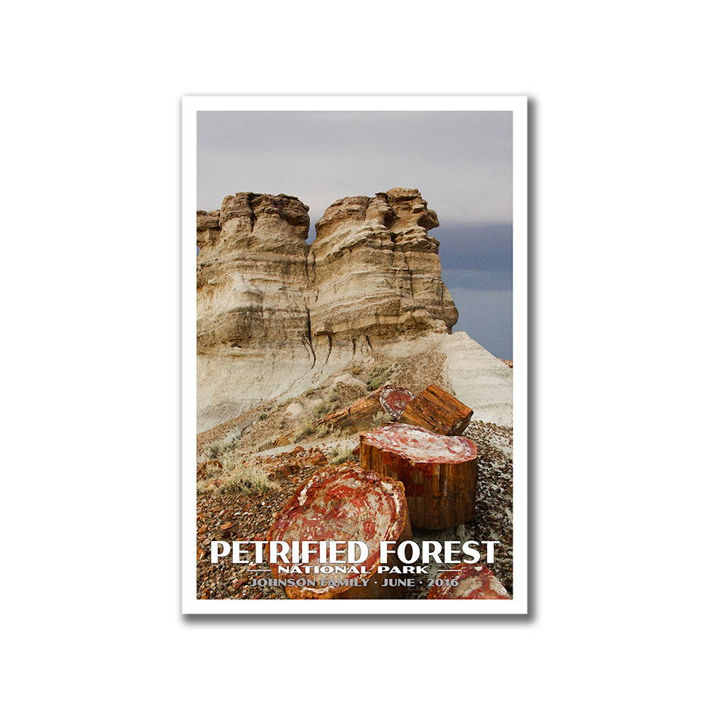 Petrified National Park Poster