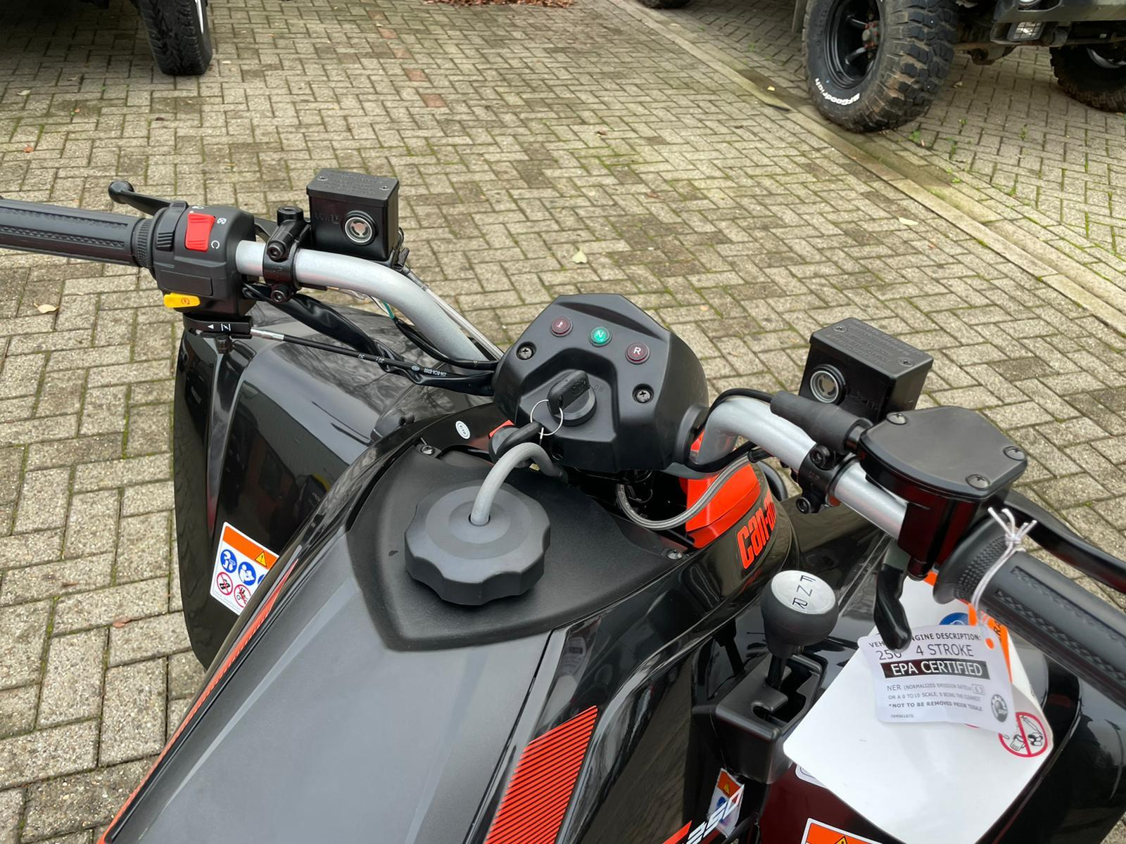 2021 DS 250 's gallery image