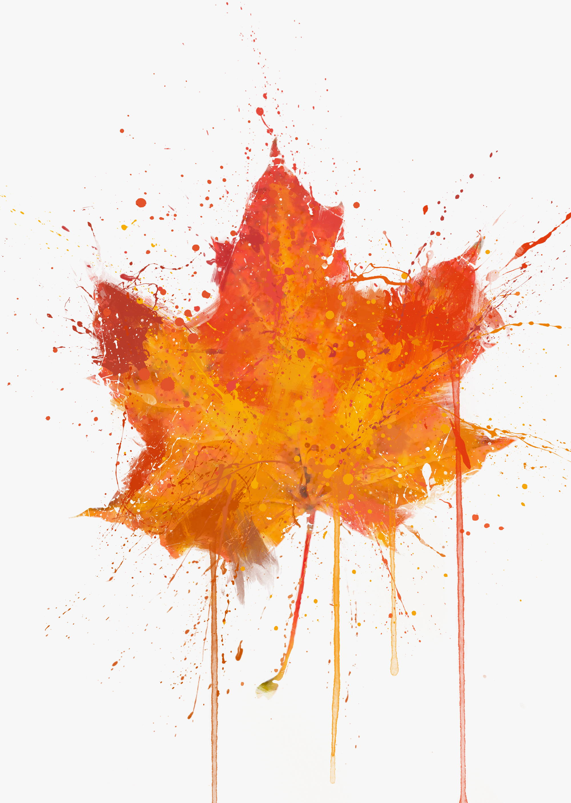 Maple Leaf Wall Art Print Autumn Art