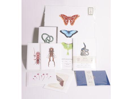 Open Sea Design Co. Paper Goods Gift Set