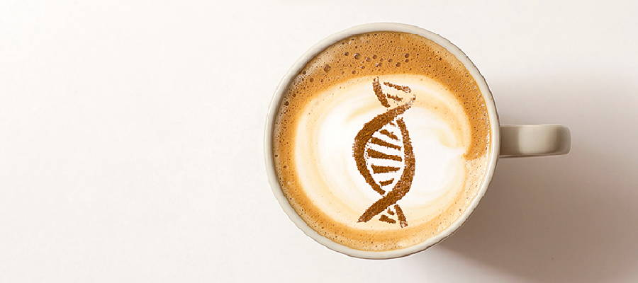 Decaf or Not to Decaf? Ask Your Genes. - GenoPalate Inc