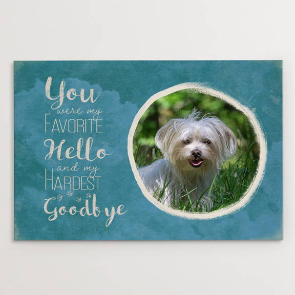 You Were My Favorite Hello and My Hardest Goodbye, Memorial, Havanese