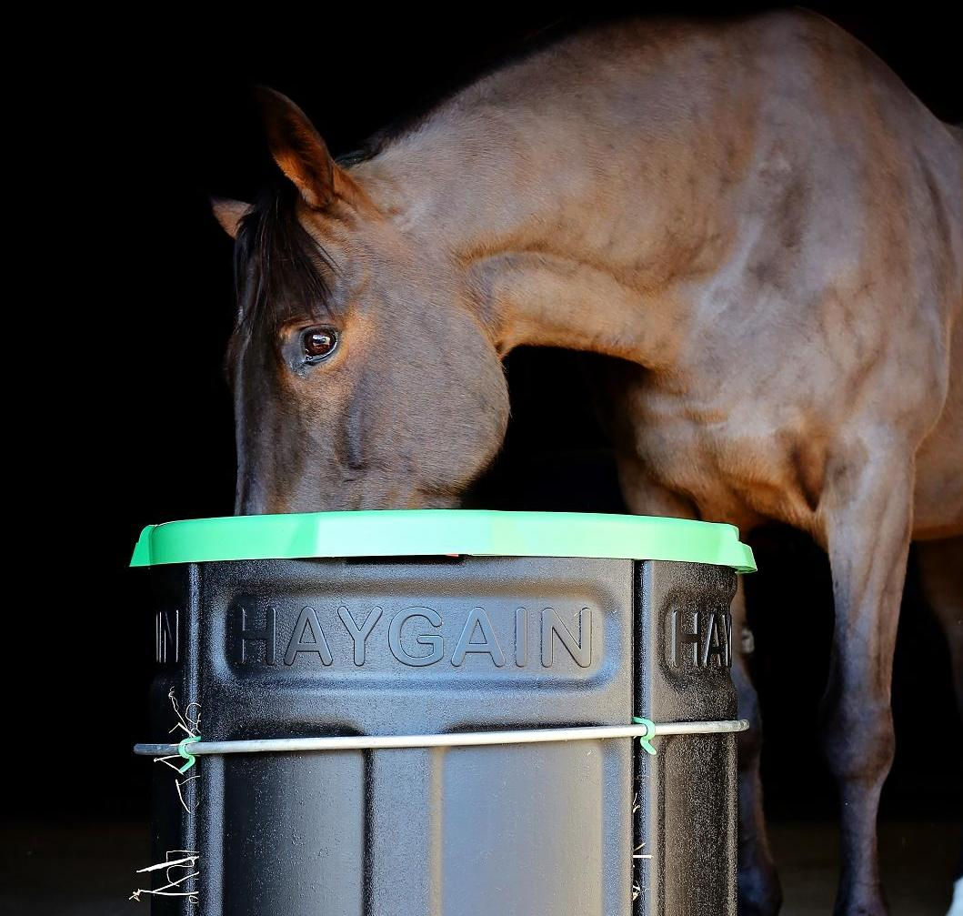 youtube drury bale watch feeder promotional video horse feeders healthy round