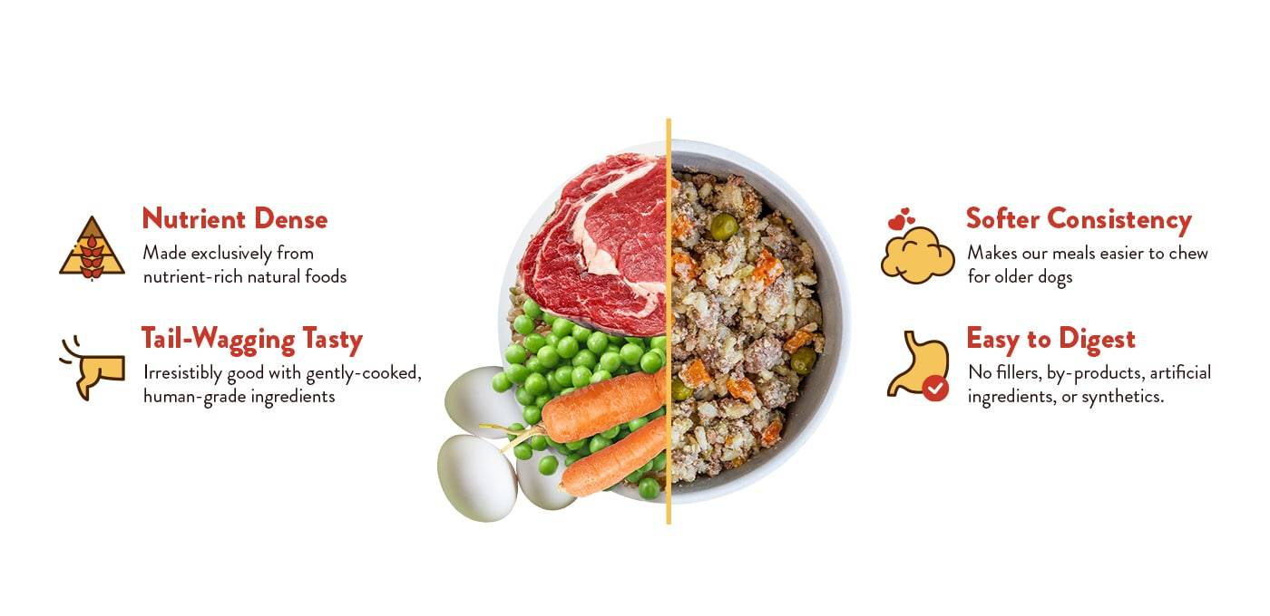 Rosie's Beef N' Rice, the best wet dog food for senior dogs.