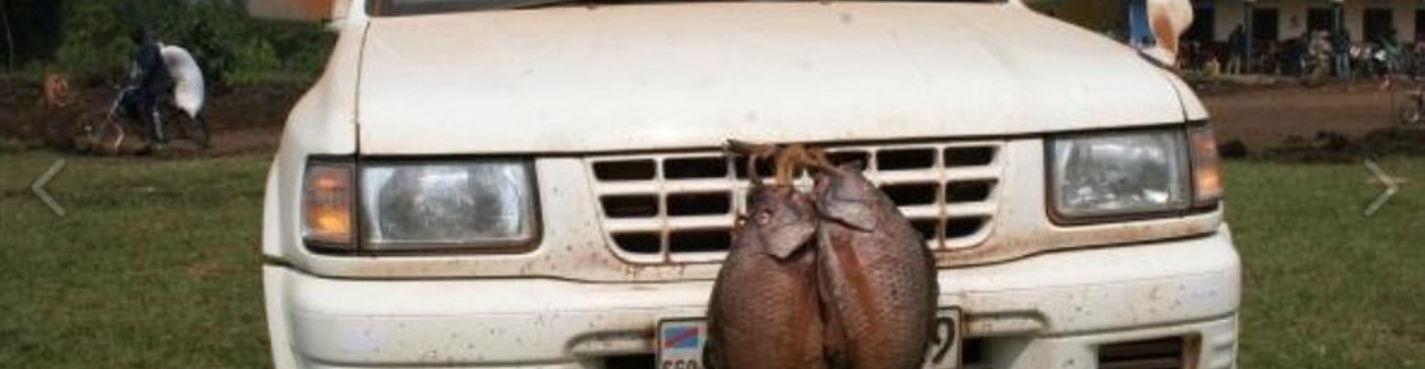 Аренда машин с водителем в Момбасе, Малинди, Диани