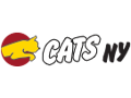 CATS NYC - $100 off Basic or Game Sports Development Class