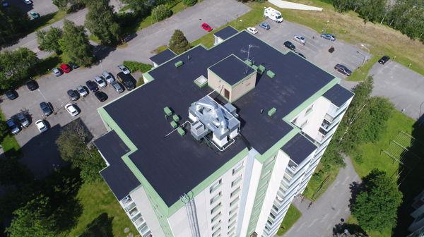 Pohjolan Pintamestarit, Oulu