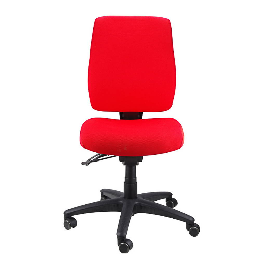 ergoform office chair for lower back pain