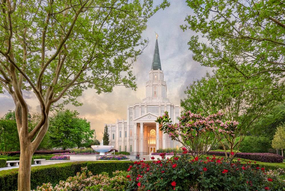 Houston Temple photo featuring a stone nativity set on the grounds.