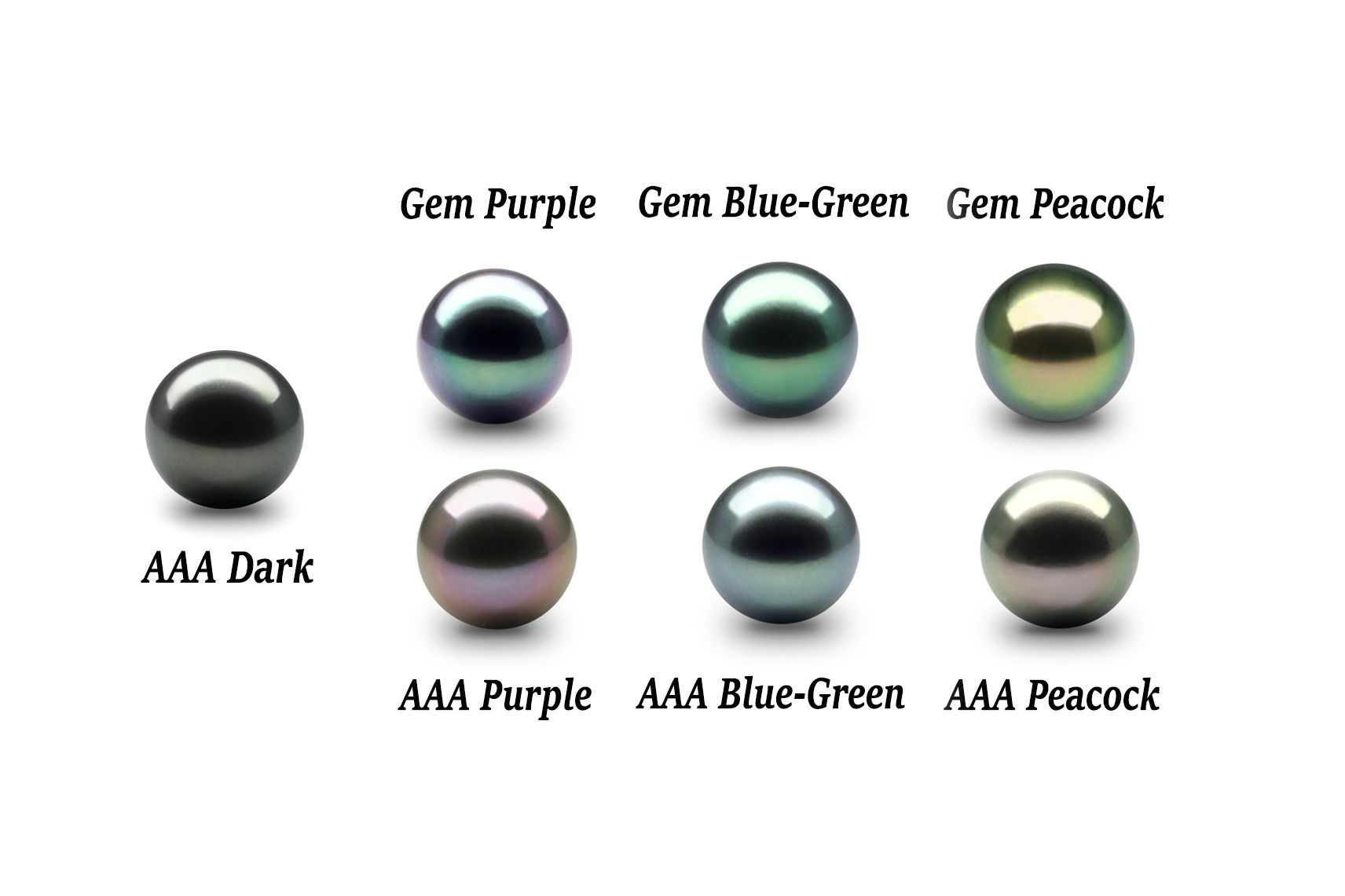 freshwater zylana types tahitian south sea pearls