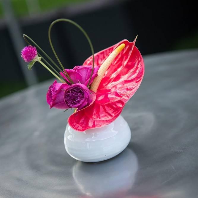 Anthurium bud vase | Special Event Flowers