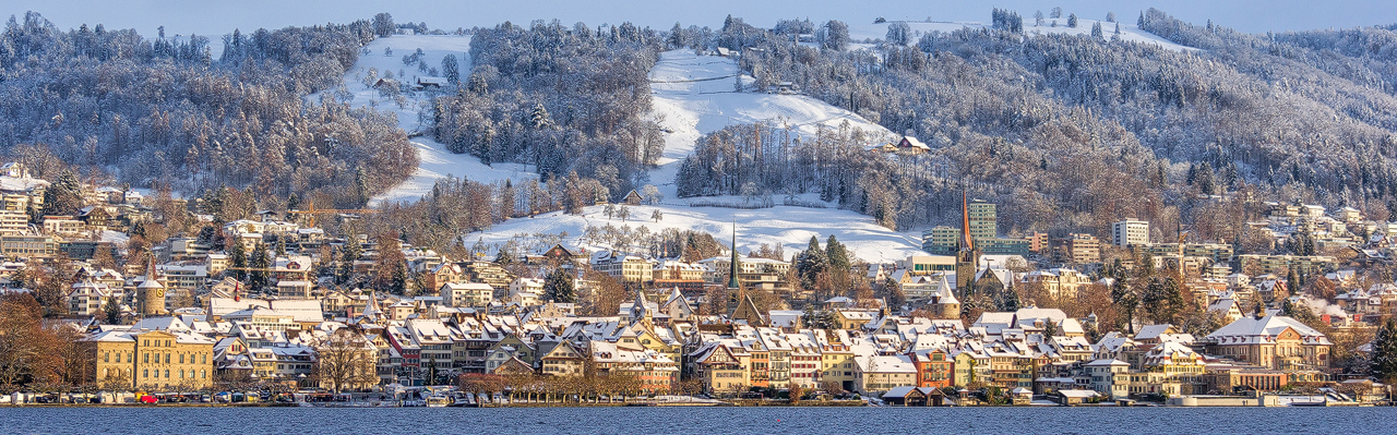 Zug - Zug Winterpanorama 3