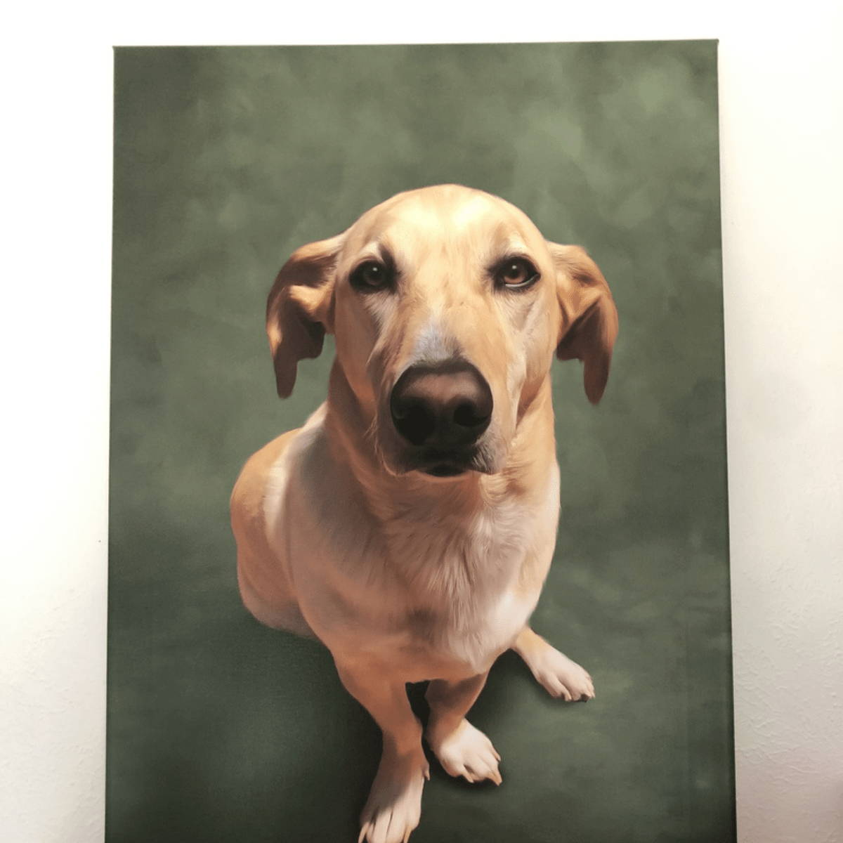Hand painted painting of dog on green background