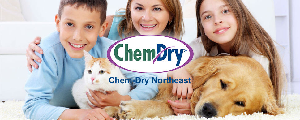 Chem-Dry Northeast