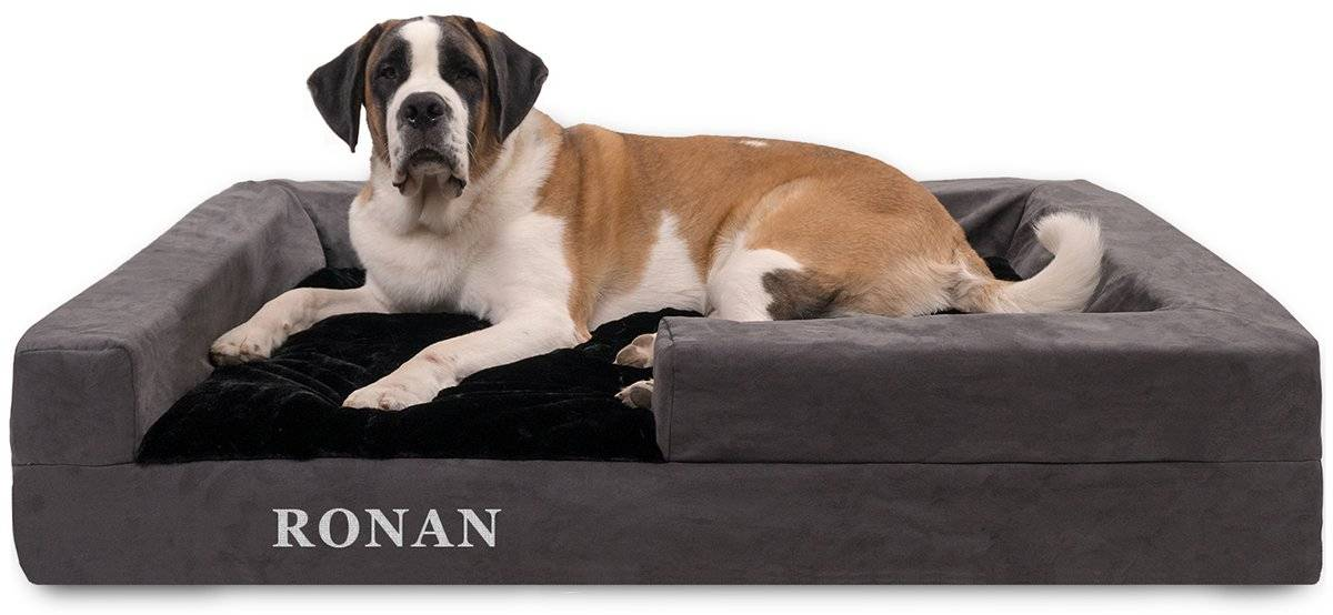 a saint bernard lying on a giant bolstered dog bed