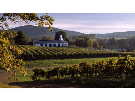 Amazing 3 - Night Experience on the Monticello Wine Trail for 2 Couples – Discover the Birthplace of American Wine!