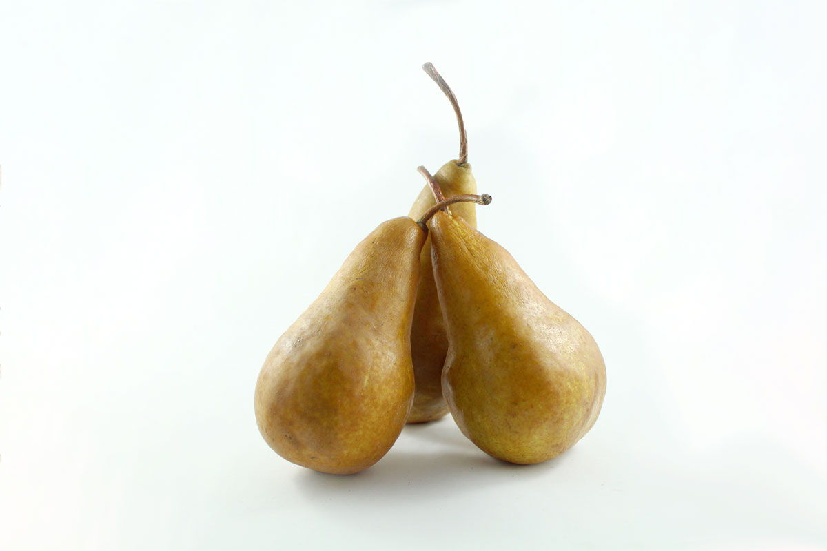 Bosc Pears - Souto Farms Fresh BC Fruit