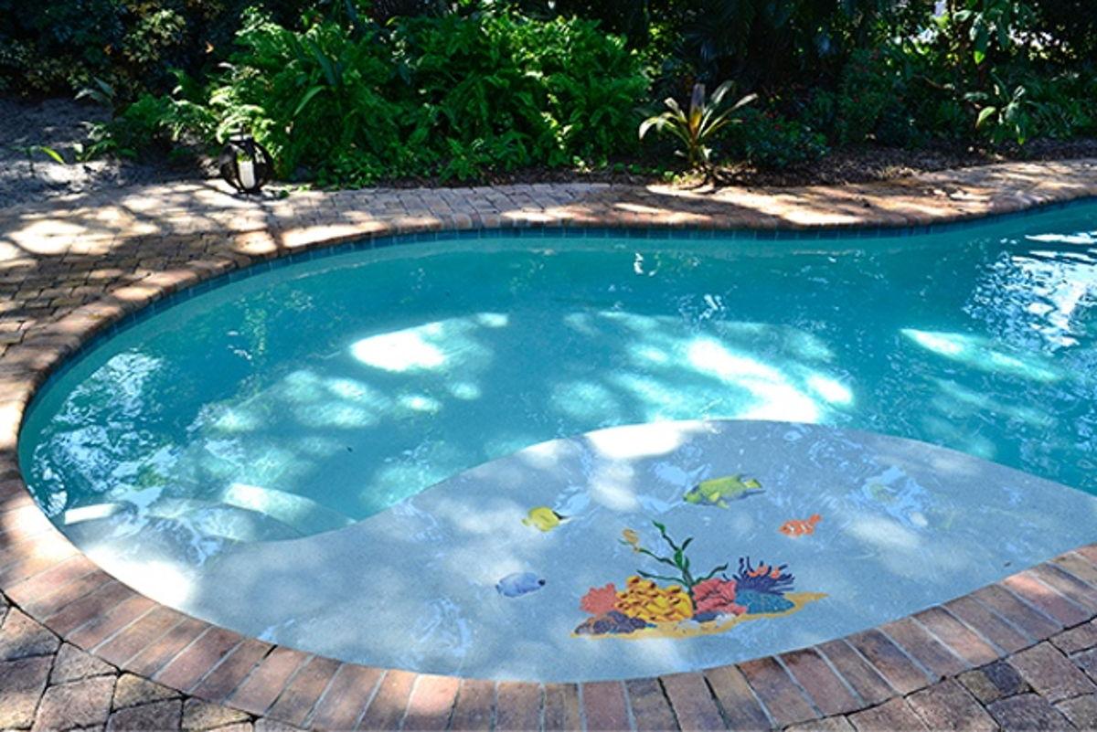 TREMCOM - Tropical Reef Pool Mosaic