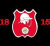Old Basing CC Logo