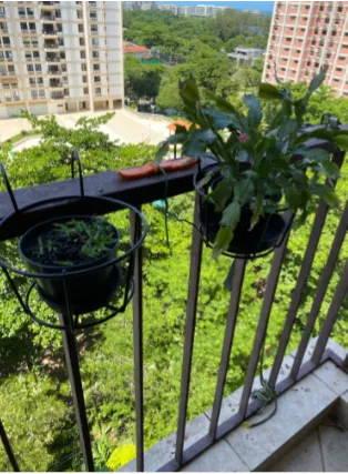 Flowerpot holder-iron-planter-support for balcony-balco-testimonial-1