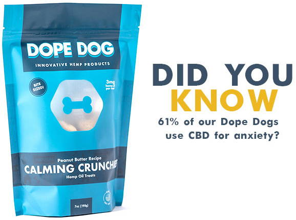 Dope Dogs use CBD for Anxiety