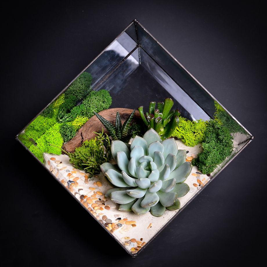 """Флорариум с суккулентами """"Grand cube"""""""
