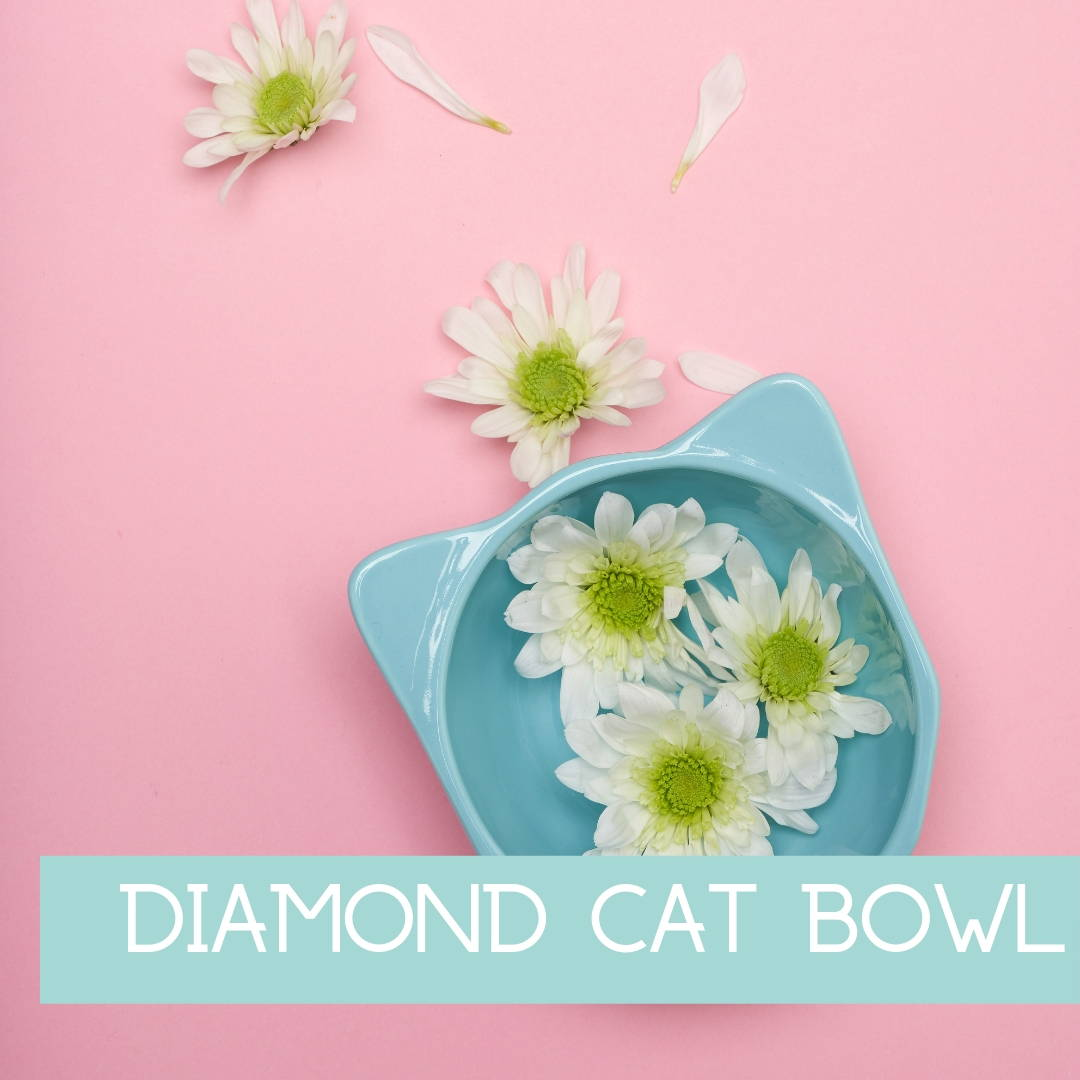 Diamond Cat Bowl