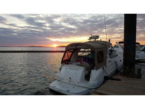 Private Boston Harbor Cruise for 4