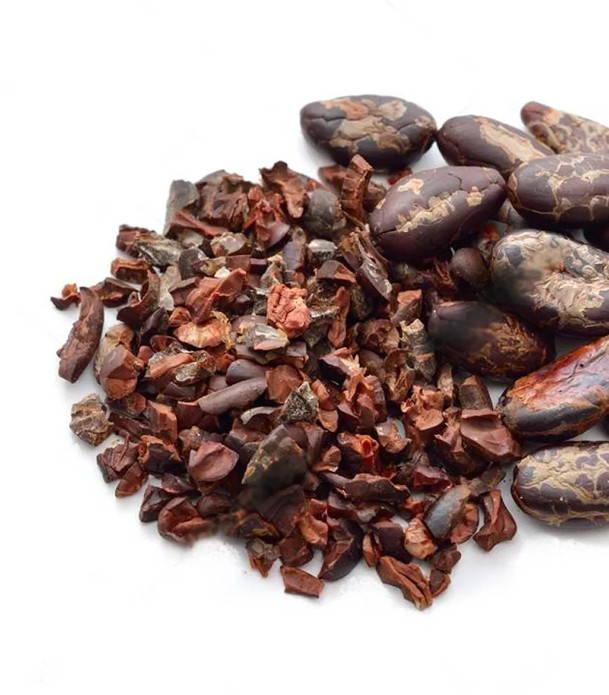 Raw Criollo cacao nibs.