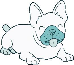 Happy dog using Revol dog crate