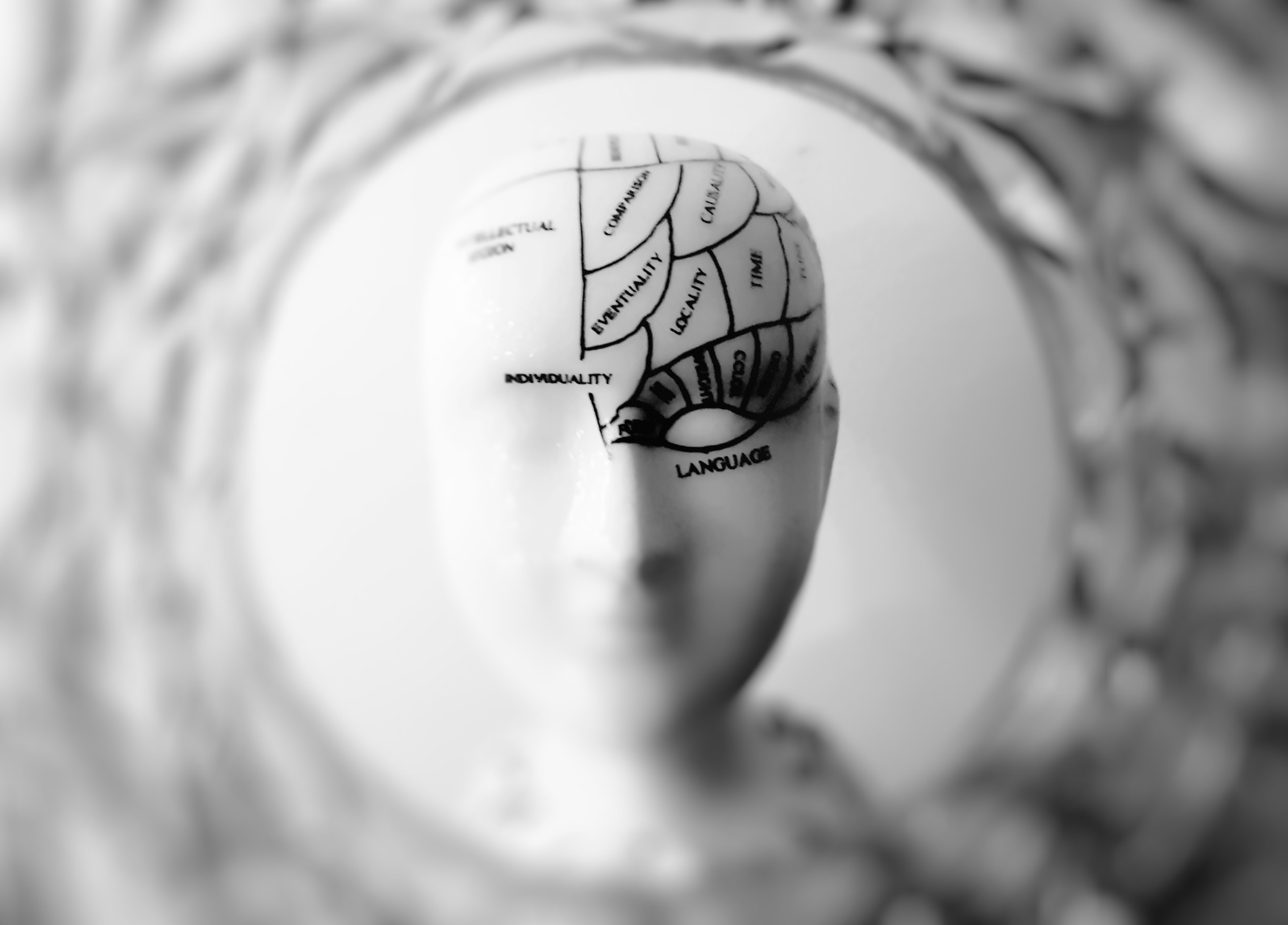 Adaptive Brain Lab Psychological Studies (I)