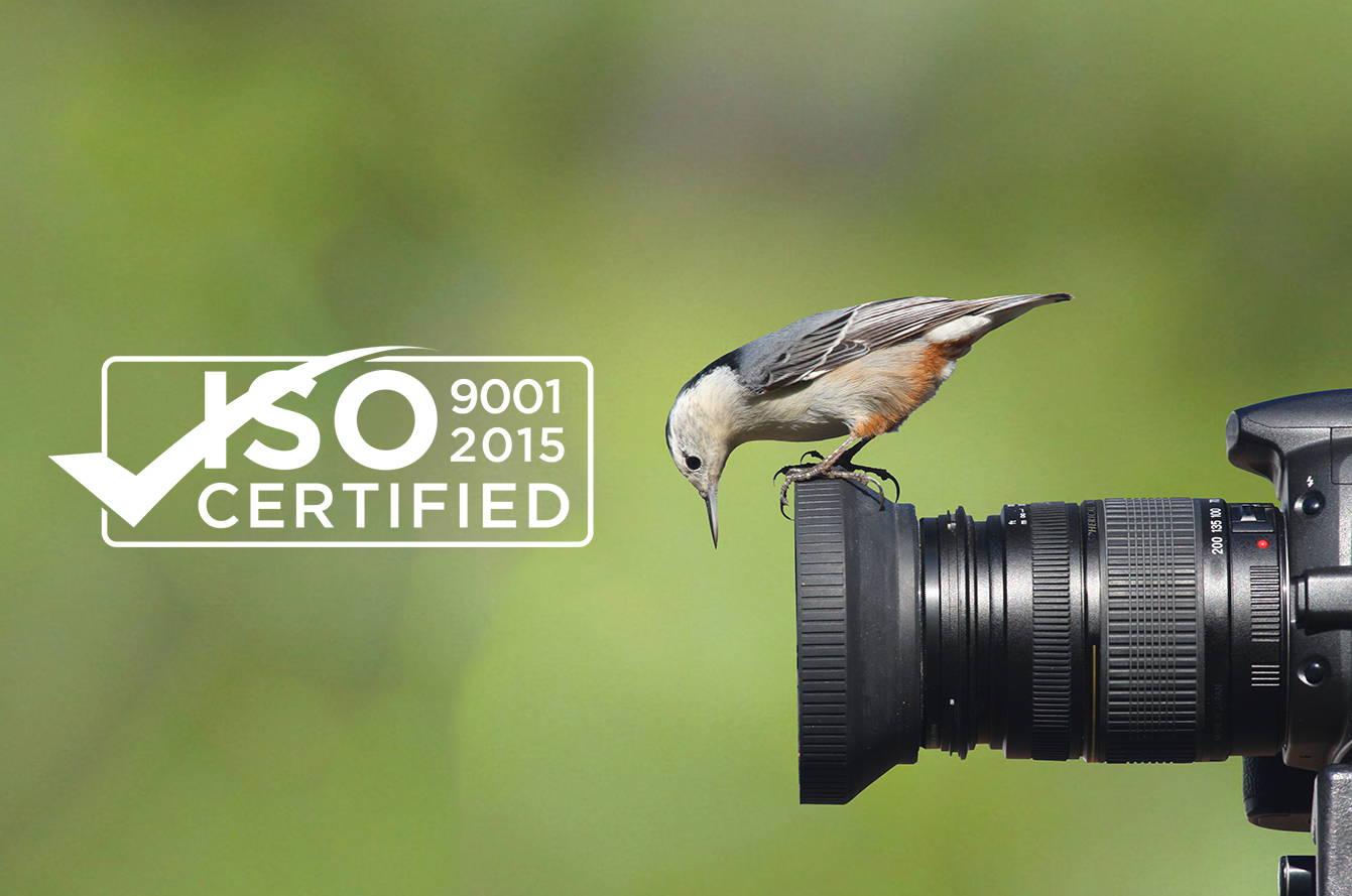 Certificación ISO 9001-2015 con un pájaro sobre un objetivo de cámara