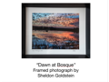 Dawn at Bosque  - Print with Archival Inks