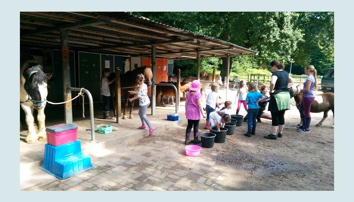 ponyhof meyerspark