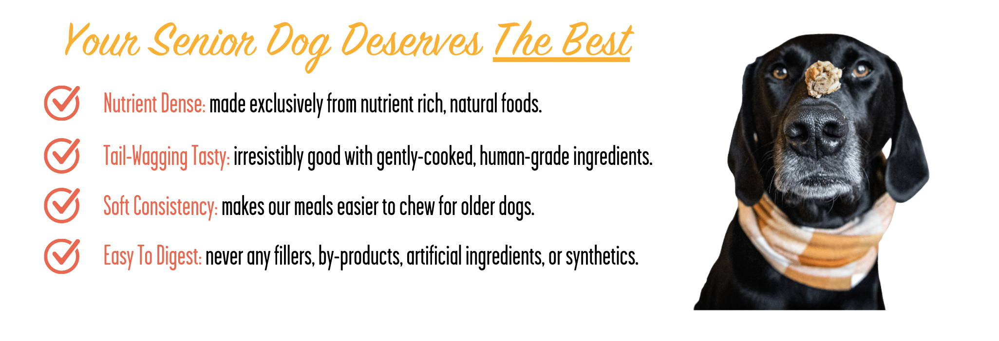 A list of what makes Portland Pet Food's all natural toppers the best dog food for senior  dogs.