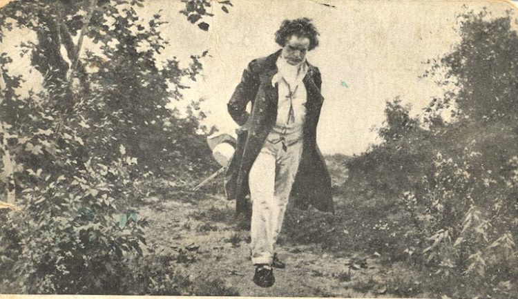 Beethoven walk in nature 1