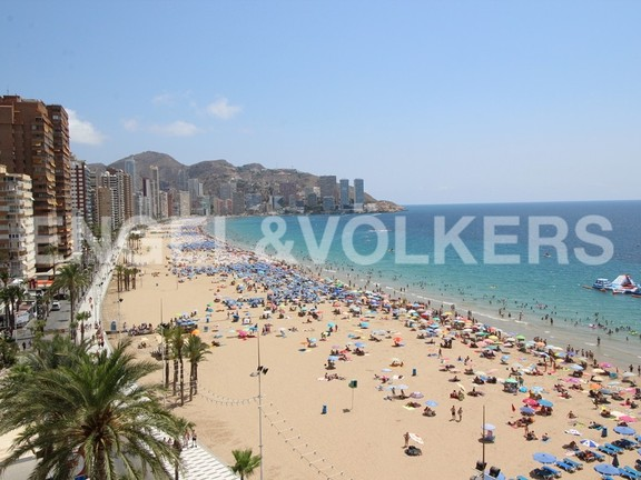 Benidorm, Spain - apartment-in-first-line-of-the-beach.jpg