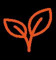 icon natural plant colour orange