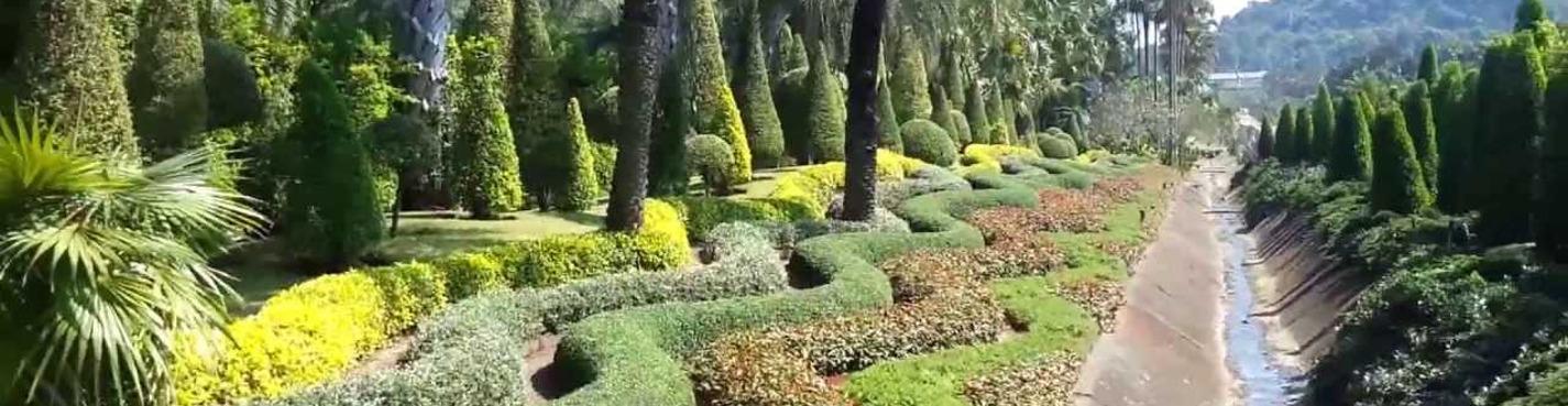 Паттайя - Тропический сад Нонг Нуч и Шоу Слонов