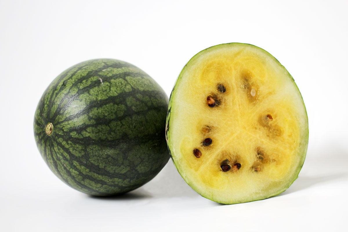 Watermelon - Souto Farms Fresh BC Fruit