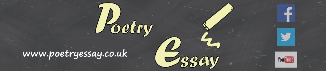 Poetry Essay's Shop