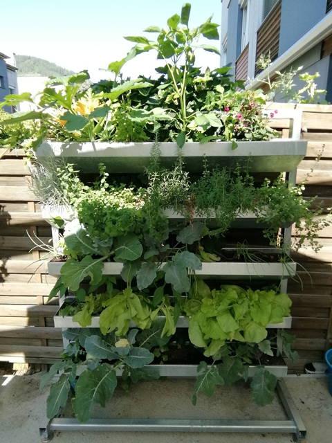 Vertikalbeet für Gemüse und Kräuter, Hochbeet