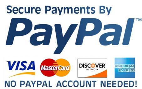 sex doll paypal payment